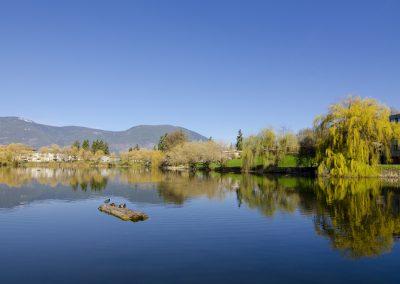 McGuire Lake 3, Salmon Arm, Shuswap, spring, landscape, Darren Robinson